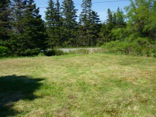 Photo 11: - Little Liscomb Road in Little Liscomb: 303-Guysborough County Vacant Land for sale (Highland Region)  : MLS®# 201728127