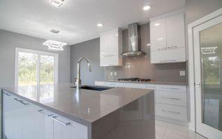Photo 9: 6451 175 Avenue NW in Edmonton: Zone 03 House for sale : MLS®# E4226087