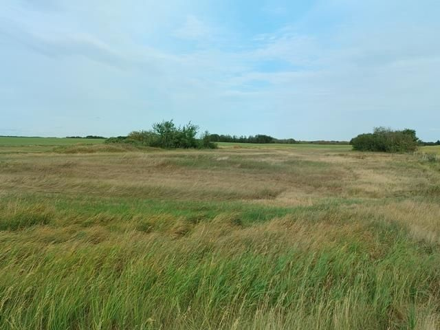 Main Photo: : Rural Beaver County Rural Land/Vacant Lot for sale : MLS®# E4239437