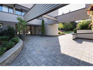 "Photo 17: 308 15313 19 Avenue in Surrey: King George Corridor Condo for sale in ""Village Terrace"" (South Surrey White Rock)  : MLS®# R2406758"