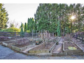 """Photo 18: 24697 48B Avenue in Langley: Salmon River House for sale in """"STRAWBERRY HILLS"""" : MLS®# F1326525"""