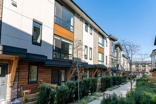 """Photo 32: 204 16488 64 Avenue in Surrey: Cloverdale BC Townhouse for sale in """"Harvest at Bose Farm"""" (Cloverdale)  : MLS®# R2446564"""