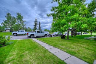 Photo 5: 39 Erin Green Way SE in Calgary: Erin Woods Detached for sale : MLS®# A1118796