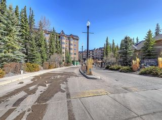 Photo 28: 115 10 Discovery Ridge Close SW in Calgary: Discovery Ridge Apartment for sale : MLS®# A1095316