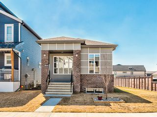 Photo 46: 417 Chinook Gate Square SW: Airdrie Detached for sale : MLS®# A1096458