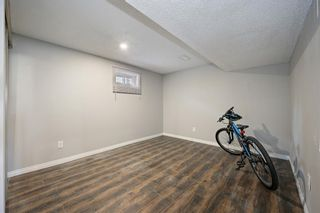 Photo 10: 244 Penbrooke Close SE in Calgary: Penbrooke Meadows Detached for sale : MLS®# A1074367