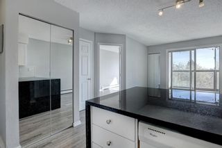 Photo 6: 402 2130 17 Street SW in Calgary: Bankview Apartment for sale : MLS®# A1104812