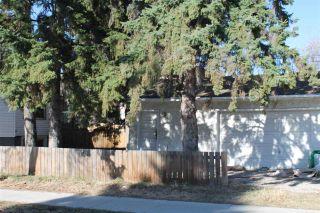 Photo 29: 10702 76 Avenue in Edmonton: Zone 15 House for sale : MLS®# E4242028
