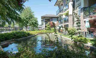 Photo 2: 116 15195 36 Avenue: White Rock Condo for sale (South Surrey White Rock)  : MLS®# R2192480