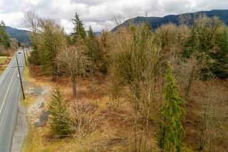 Photo 9: 30684 DEWDNEY TRUNK Road in Mission: Stave Falls Land for sale : MLS®# R2536315