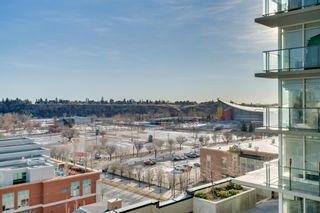 Photo 14: 905 1122 3 Street SE in Calgary: Beltline Apartment for sale : MLS®# A1087360