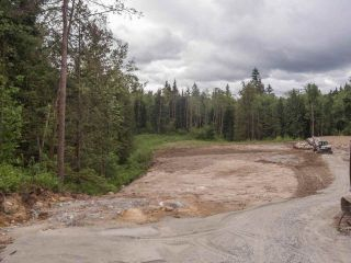"Photo 8: 12230 267 Street in Maple Ridge: Northeast Land for sale in ""MCFADDEN CREEK ESTATES"" : MLS®# R2166047"