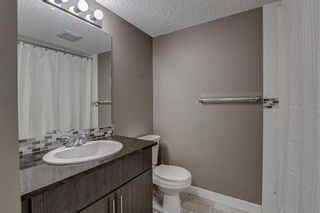 Photo 43: 2305 1317 27 Street SE in Calgary: Albert Park/Radisson Heights Apartment for sale : MLS®# A1060518