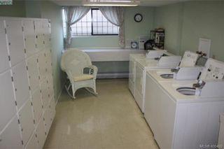 Photo 13: 203 935 Fairfield Rd in VICTORIA: Vi Fairfield West Condo for sale (Victoria)  : MLS®# 805706