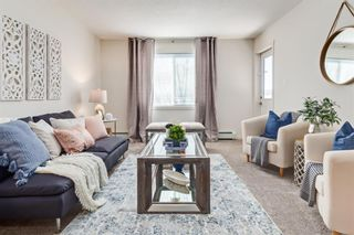 Main Photo: 3215 181 Skyview Ranch Manor NE in Calgary: Skyview Ranch Apartment for sale : MLS®# A1089993