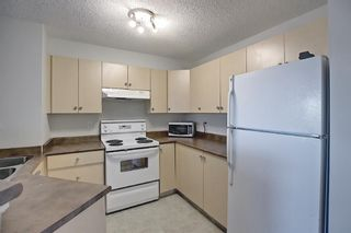 Photo 4: 4306 4975 130 Avenue SE in Calgary: McKenzie Towne Apartment for sale : MLS®# A1082092