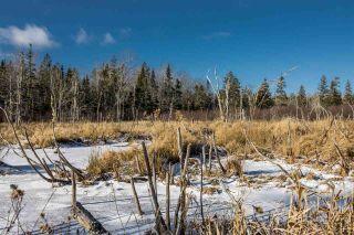 Photo 5: Lot Greenfield Road in Greenfield: 404-Kings County Vacant Land for sale (Annapolis Valley)  : MLS®# 202025611