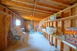 Photo 46: 24 Roe St in Portage la Prairie: House for sale : MLS®# 202117744