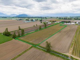 Photo 3: 5111 TOLMIE Road in Abbotsford: Sumas Prairie House for sale : MLS®# R2573312