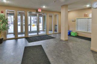 Photo 12: 209 270 MCCONACHIE Drive in Edmonton: Zone 03 Condo for sale : MLS®# E4225834
