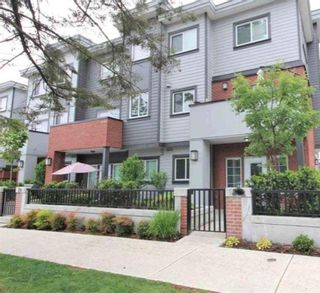 Photo 14: 24 7247 140 Street in Surrey: East Newton Townhouse for sale : MLS®# R2547195