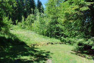 Photo 21: 4265 Eagle Bay Road: Eagle Bay House for sale (Shuswap Lake)  : MLS®# 10131790
