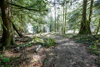 Photo 21: LOT 7 HARRISON River: Harrison Hot Springs House for sale : MLS®# R2562627
