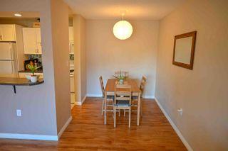 Photo 9: 241 10636 120 Street in Edmonton: Zone 08 Condo for sale : MLS®# E4265580