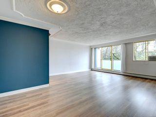 Photo 1: 314 1025 Inverness Rd in Saanich: SE Quadra Condo for sale (Saanich East)  : MLS®# 864278