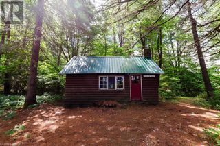 Photo 40: 996 CHETWYND Road in Burk's Falls: House for sale : MLS®# 40132306
