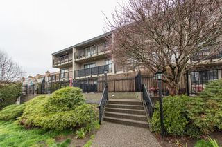 """Photo 29: 303 803 QUEENS Avenue in New Westminster: Uptown NW Condo for sale in """"Sunnydale"""" : MLS®# R2563171"""
