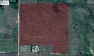 Photo 4: 142.67 Acres - RM Huron #223 - Tugaske, SK Area