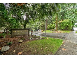 """Photo 31: 8204 FOREST GROVE Drive in Burnaby: Forest Hills BN Townhouse for sale in """"HENLEY ESTATES"""" (Burnaby North)  : MLS®# R2621555"""