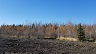 Photo 14: #3-51227 RGE RD 270 Road: Rural Parkland County Rural Land/Vacant Lot for sale : MLS®# E4211009