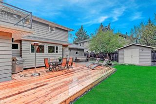 Photo 36: 3136 LINDEN Drive SW in Calgary: Lakeview Detached for sale : MLS®# C4246154