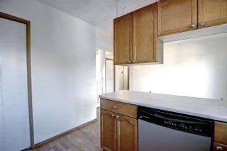 Photo 10:  in Edmonton: Zone 29 House for sale : MLS®# E4262869