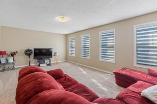 Photo 19: 101 COPPERSTONE Close SE in Calgary: Copperfield Detached for sale : MLS®# A1076956