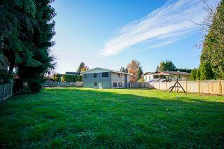 Photo 20: 20845 STONEY Avenue in Maple Ridge: Southwest Maple Ridge House for sale : MLS®# R2430197