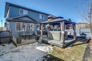 Photo 46: 112 EVANSPARK Circle NW in Calgary: Evanston House for sale : MLS®# C4179128