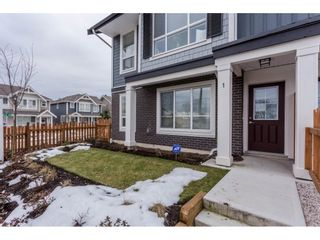 """Photo 19: 1 7157 210 Street in Langley: Willoughby Heights Townhouse for sale in """"Alder"""" : MLS®# R2139231"""