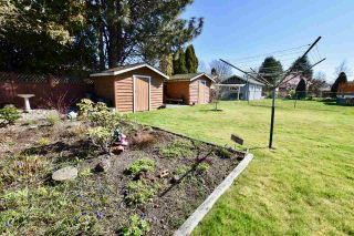 Photo 19: 4612 60B STREET in Ladner: Holly House for sale : MLS®# R2353581