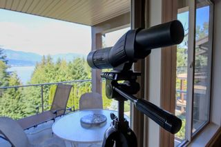 Photo 22: 2245 Lakeview Drive: Blind Bay House for sale (South Shuswap)  : MLS®# 10186654
