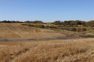 Photo 10: TWP 495 RR 232: Rural Leduc County Rural Land/Vacant Lot for sale : MLS®# E4216268