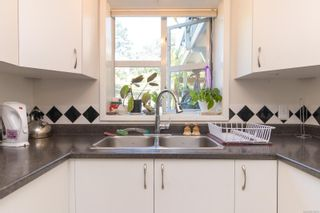 Photo 16: 3349 Cook St in : SE Maplewood House for sale (Saanich East)  : MLS®# 878375
