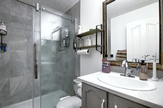 Photo 22: 47 Appleburn Close SE in Calgary: Applewood Park Detached for sale : MLS®# A1049300