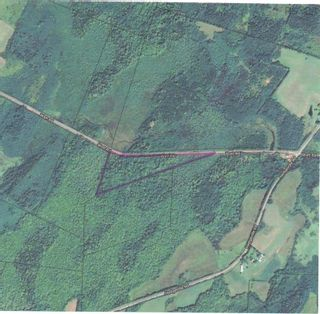Photo 8: Watt Road in Hedgeville: 108-Rural Pictou County Vacant Land for sale (Northern Region)  : MLS®# 202122216