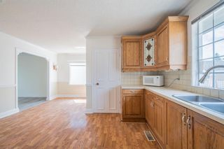 Photo 18: 12023 Candiac Road SW in Calgary: Canyon Meadows Detached for sale : MLS®# A1128675