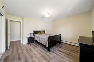 Photo 11: 304 4328 4 Street NW in Calgary: Highland Park Apartment for sale : MLS®# A1121580