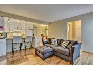 Photo 19: SOLD in 1 Day - Beautiful Strathcona Home By Steven Hill of Sotheby's International Realty