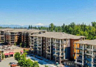Photo 4: 209 20673 78 AVENUE in Langley: Willoughby Heights Condo for sale : MLS®# R2492554